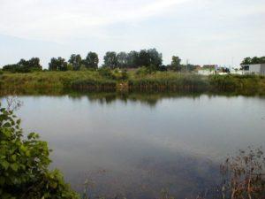 Zajednica ŠRD Osijek - Nasicki Bajer